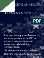 cap 4. FERMENTACION.pdf