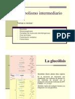 Clase 9 Metabolismo Intermediario