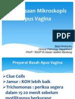Apus Vagina