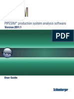 Pipesim User Guide