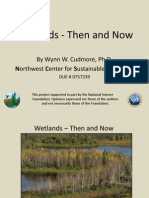 Wetlands Then and Now