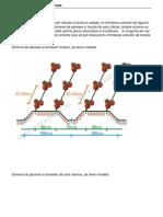 Scheme de Plantare Legume