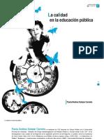 Paola Salazar - Educación pública
