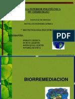 biorremediacion 2