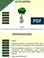 Webquest Las Plantas