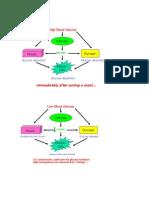 Patofisiologi Dm