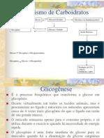 38_013723_MetabolismodeCarboidratos