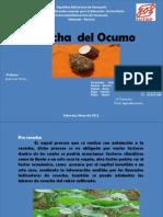 COSECHA  OCUMO