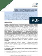 TDR Consultoría 01-2013 Diagnóstico y estudio de interés vocacional indígena Mbya Guaraní.