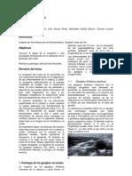 ecografa_del_cuello07.pdf