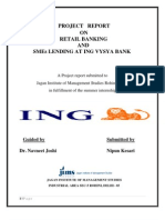 Retail Banking and Sme Lending at ING VYSYA BANK