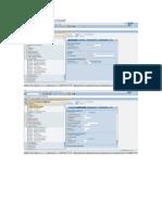 Asset Conf Document Details