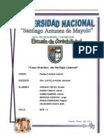 61813092-PERITAJE-contable