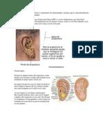 La Auriculoterapia es diagnóstico y tratamiento de enfermedades