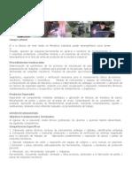 Liceo Industria Nueva Imnperial