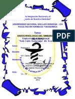 Endocrinologia Del Embarazo (1)