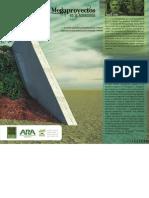Megaproyectos en La Amazonia