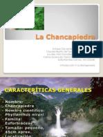 La Chancapiedra Final