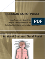 SUSUNAN SARAF PUSAT