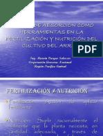 Curvas de Absorcion Como Herramientas en La Fertilizacion y Nutricion Del Cultivo Delarroz
