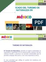 Mercado Ecoturismo Mexico 2008