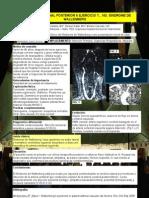 Poster Wallenberg PDF