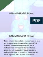 91366698 Gammagrafia Renal