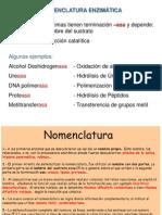 108916742-Nomenclatura-enzimatica