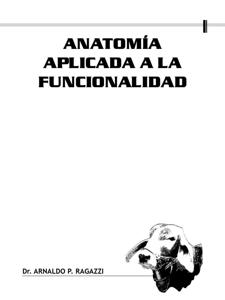 Anatomía [aplomos]) - ANATOMÍA APLICADA A AL FUNCIONALIDAD