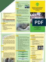 PPDS-UI
