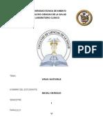 Informe Virus_antivirus-magali Naranjo