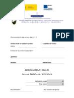 Ptgeso Com 201301 Castellano 2011