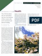 Blossom Into Health