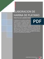 Elaboracion de Harina de Platano