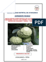 EXP. TENCINO DE AYAHUANCO DE FRUTICOLA.pdf