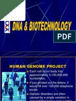 k Biotechnology
