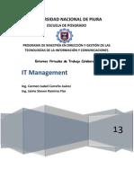 Ensayo. IT Management