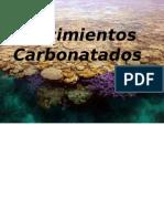 Rocas Carbonatadas