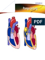 Pompa jantung. pptx