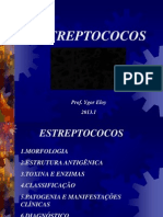 Aula06_Estreptocococ.ppt2013.1