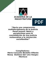 Academia de la Magistratura (curso).doc