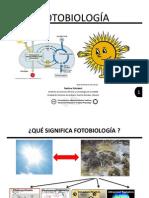 Fotobiologia 1-PS Fluorescencia