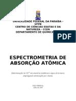Relat Rio Espectrometria de Absor o at Mica