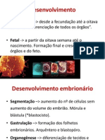 Embrio II