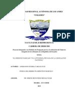 Tesis Completa Alfin PDF