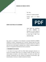 Demandas Constitucionales 6.docx