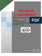 Monografia Final de Constitucional