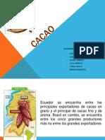 Cacao Diapo