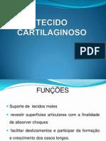 Aula de Tecido Cartilaginoso