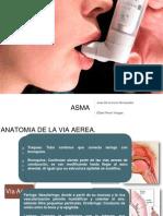 Asma Terminado